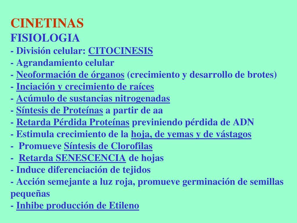 CINETINAS