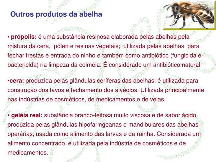 Outros produtos da abelha