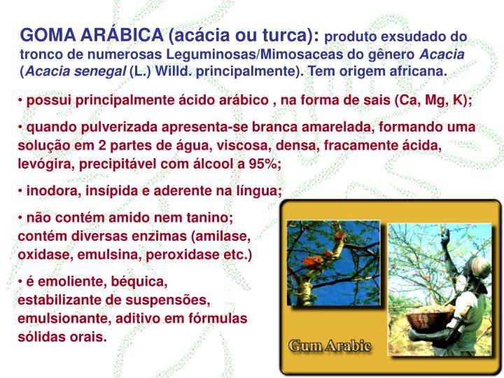 GOMA ARÁBICA (acácia ou turca):