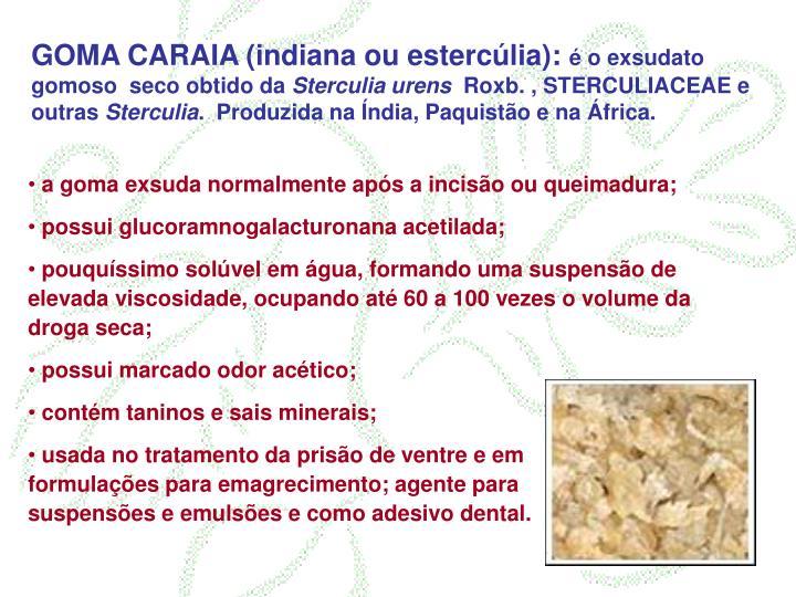 GOMA CARAIA (indiana ou estercúlia):