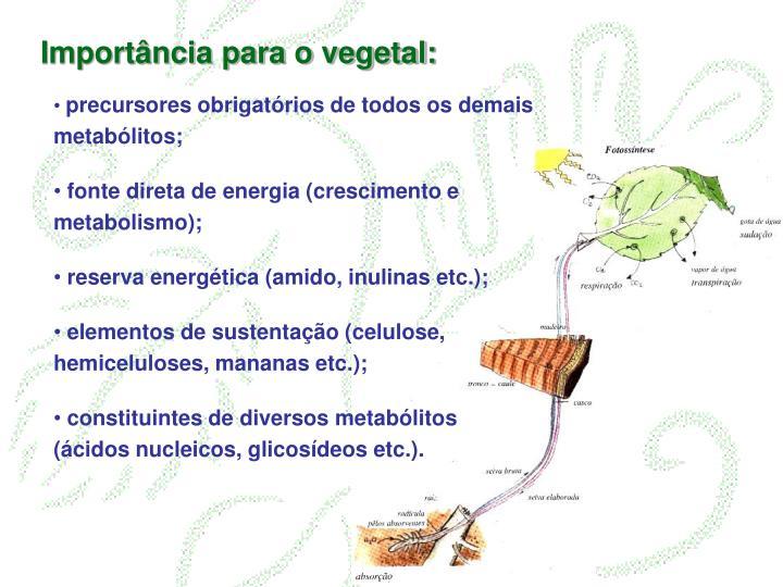 Importância para o vegetal:
