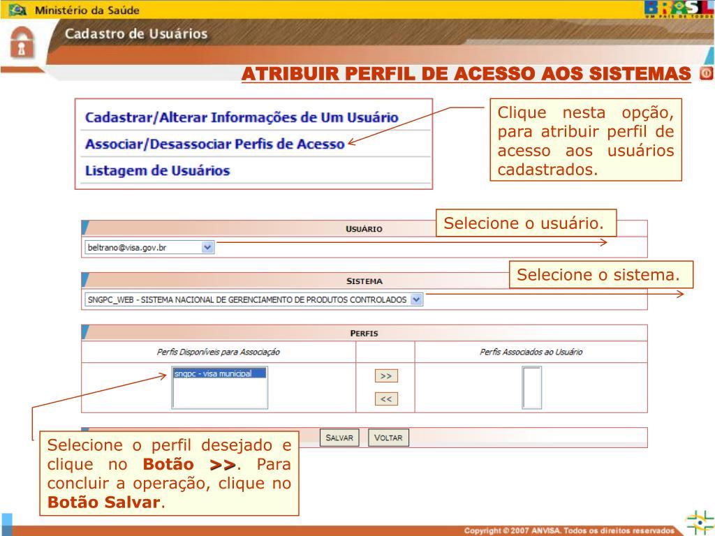 ATRIBUIR PERFIL DE ACESSO AOS SISTEMAS