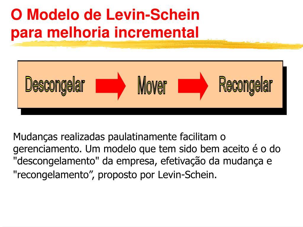 O Modelo de Levin-Schein