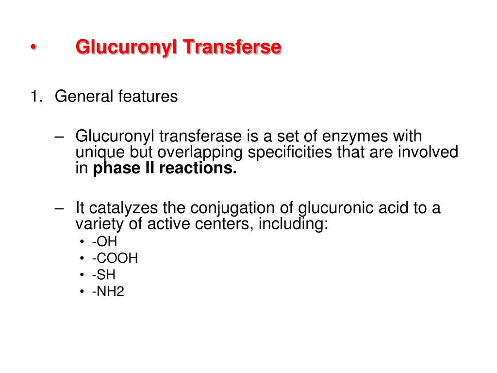Glucuronyl Transferse