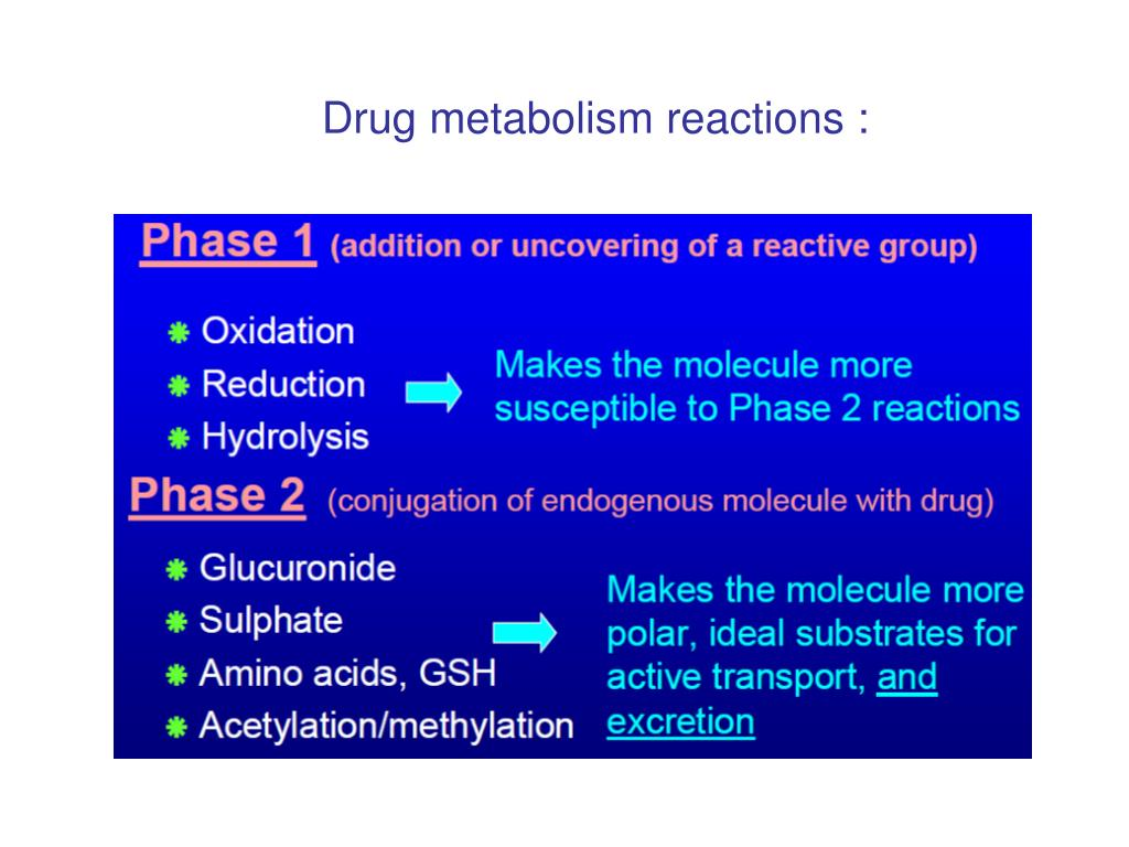 Drug metabolism reactions :