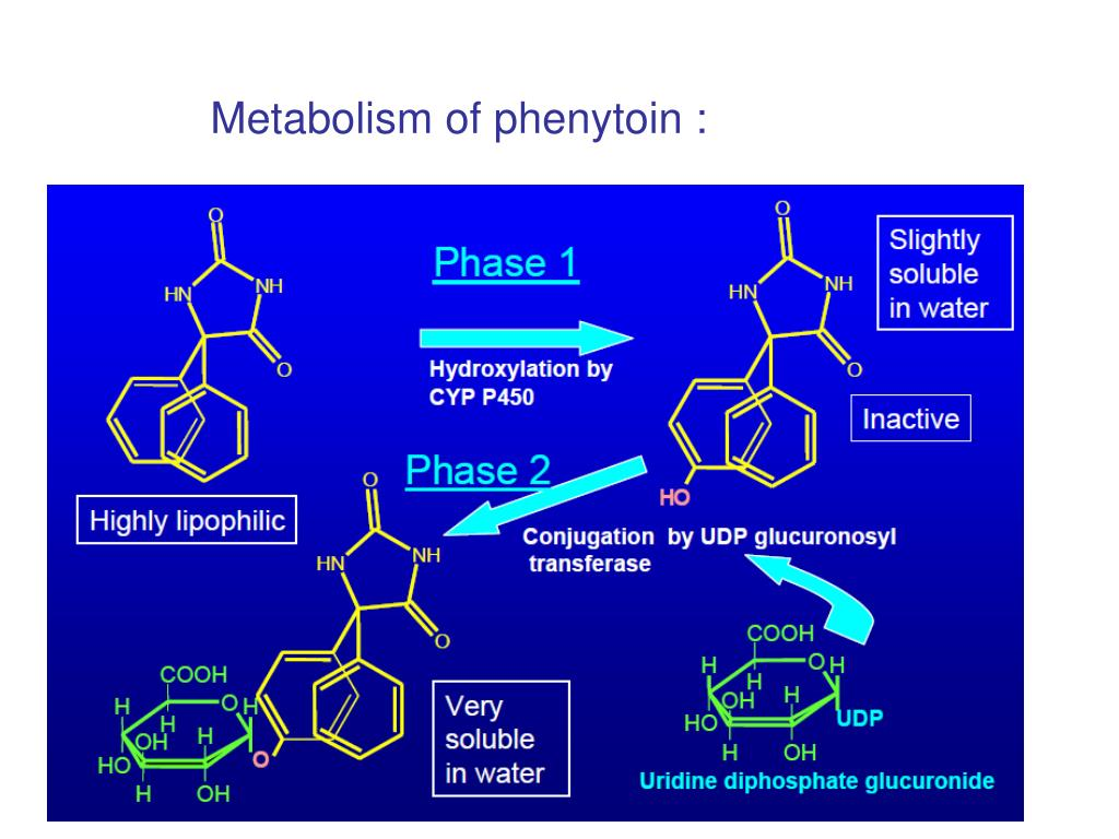 Metabolism of phenytoin :