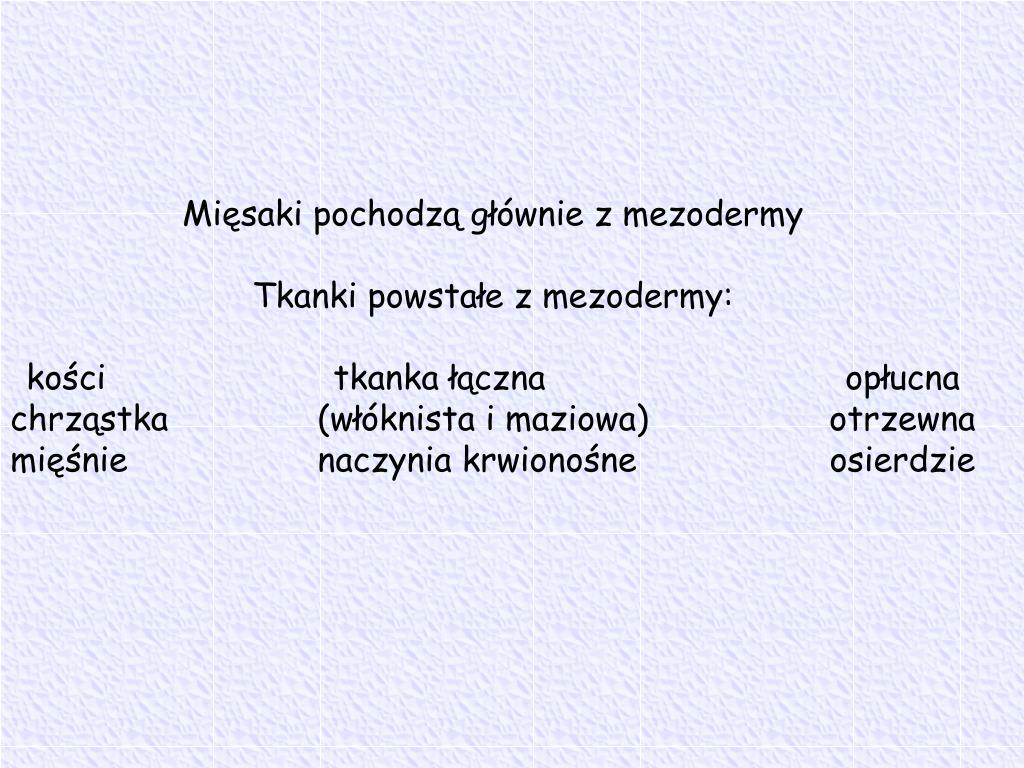 Mięsaki pochodzą głównie z mezodermy