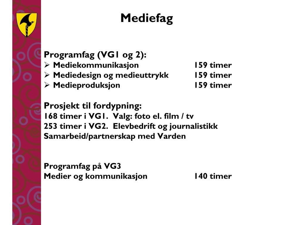 Mediefag