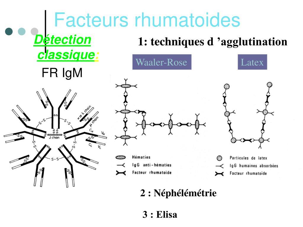 Facteurs rhumatoides