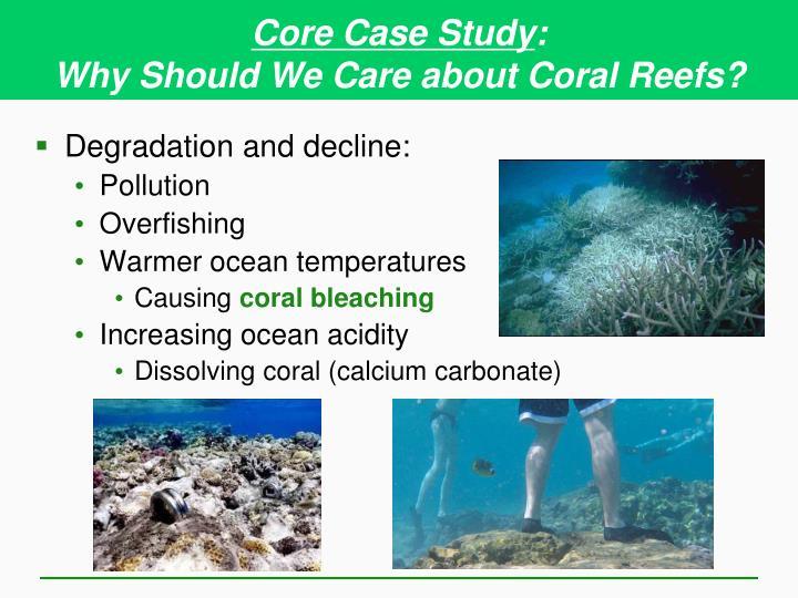 Core Case Study