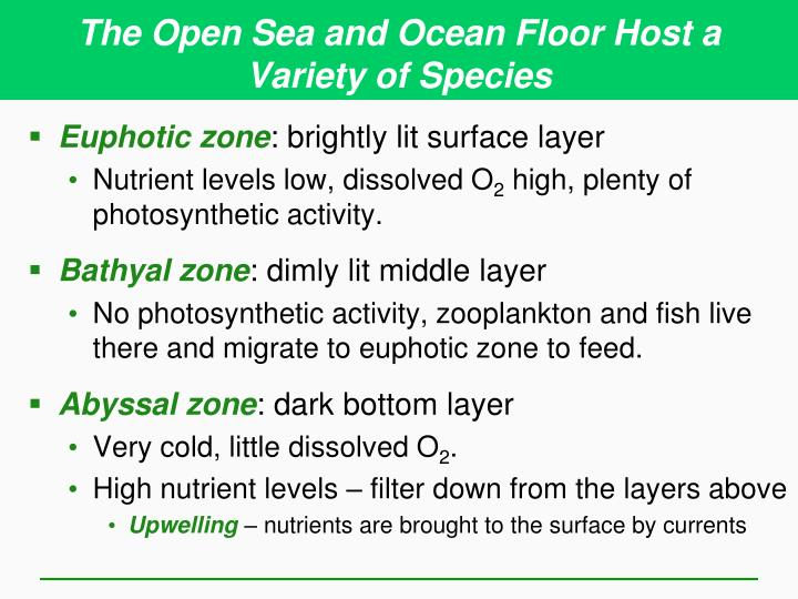 The Open Sea and Ocean Floor Host a