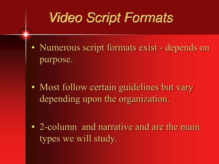Video Script Formats
