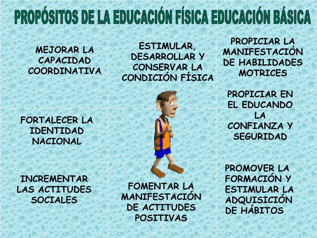 PROPÓSITOS DE LA EDUCACIÓN FÍSICA EDUCACIÓN BÁSICA