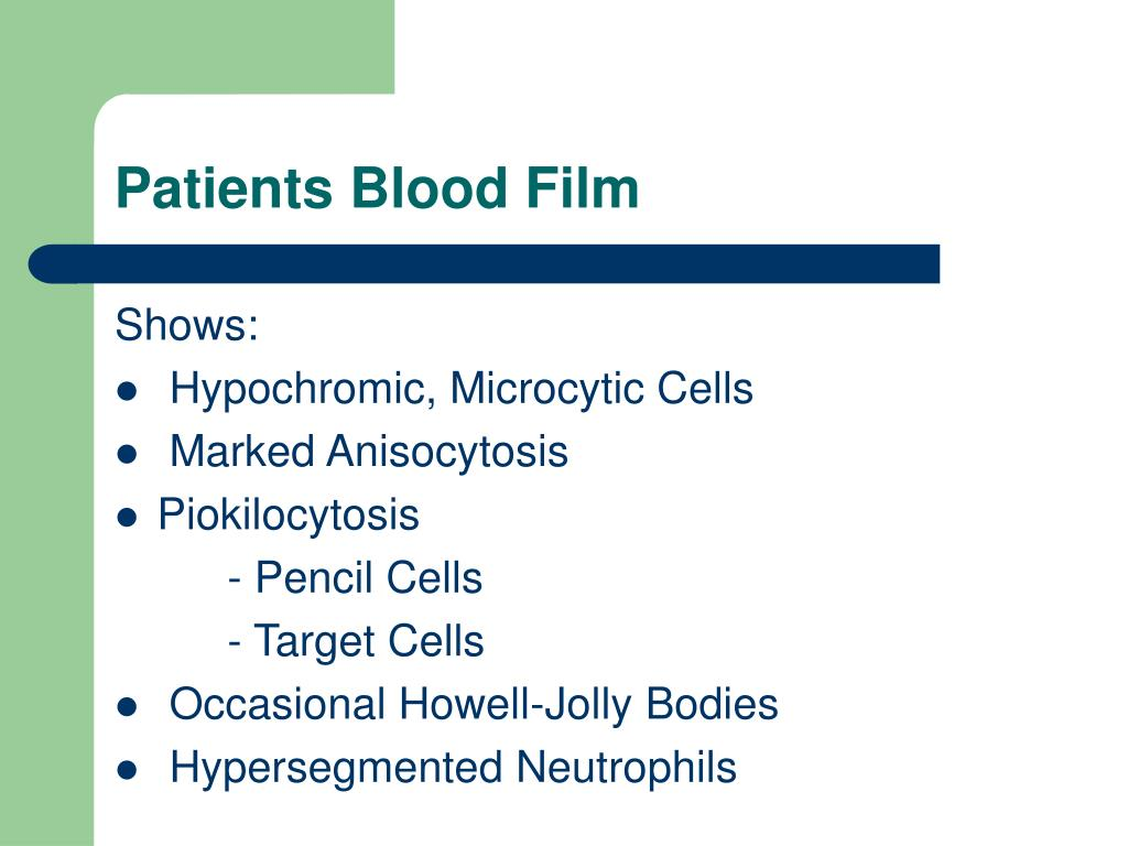 Patients Blood Film
