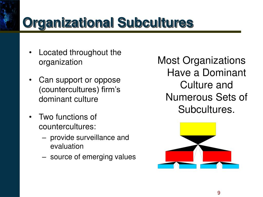 Organizational Subcultures