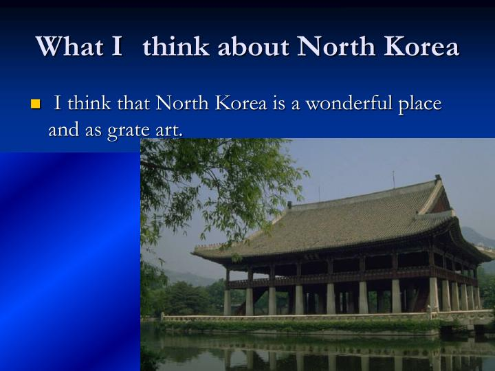 What I	 think about North Korea