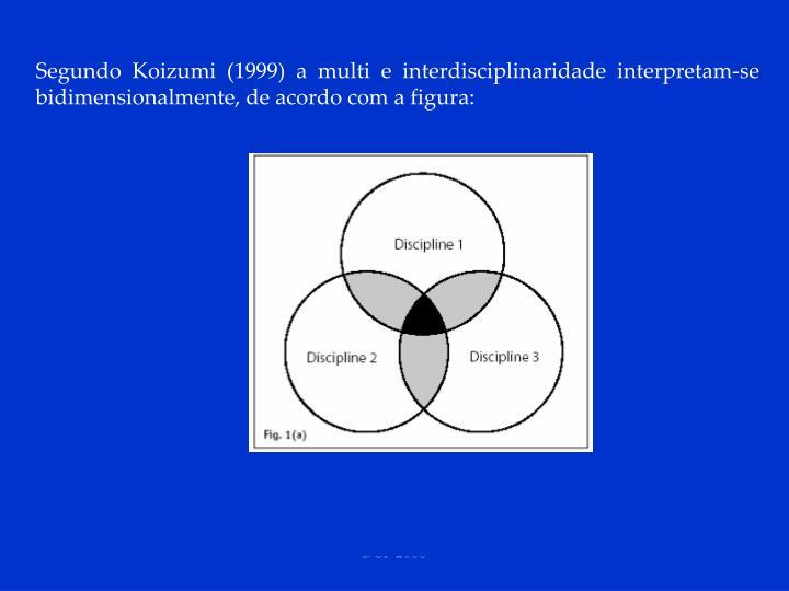 Segundo Koizumi (1999) a multi e interdisciplinaridade interpretam-se bidimensionalmente, de acordo com a figura: