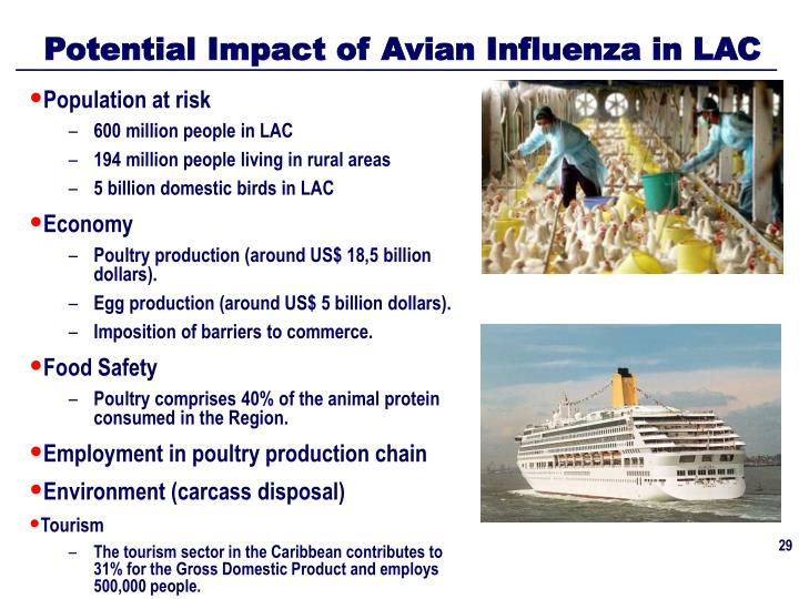 Potential Impact of Avian Influenza in LAC