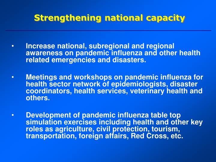 Strengthening national capacity