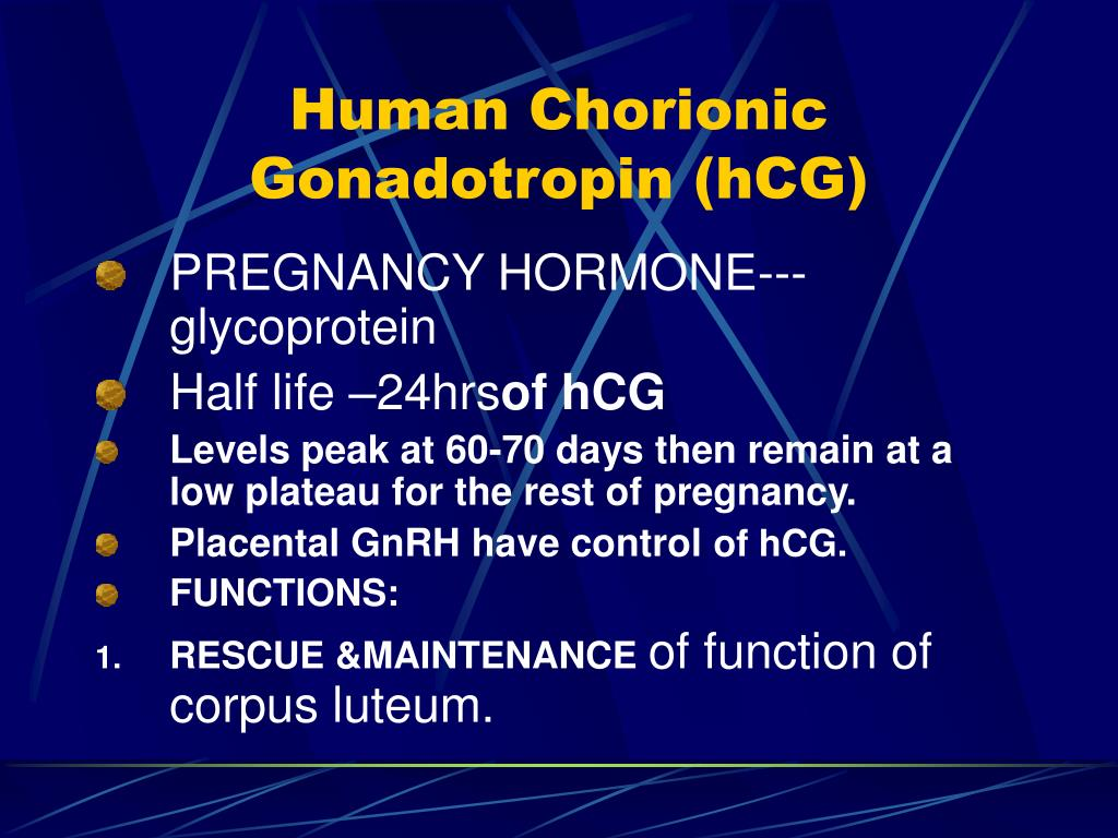 the function of human chorionic gonadotropin hcg in the human body The hormone human chorionic gonadotropin (better known as hcg) is produced during pregnancy this page covers key information about hcg levels.