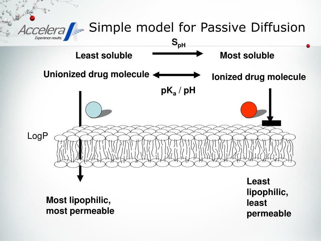 Simple model for Passive Diffusion