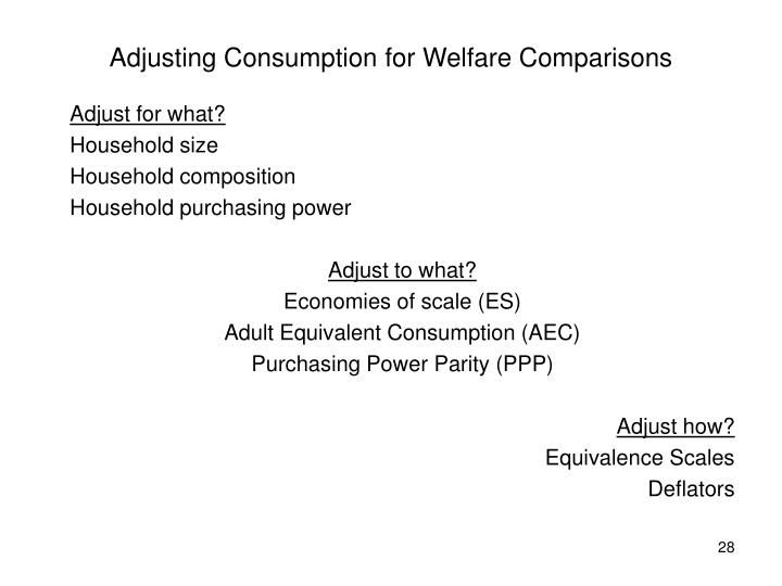 Adjusting Consumption for Welfare Comparisons