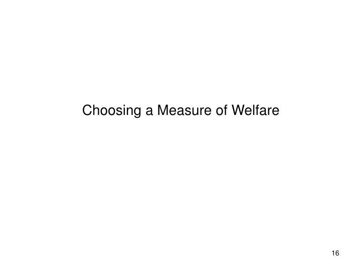 Choosing a Measure of Welfare