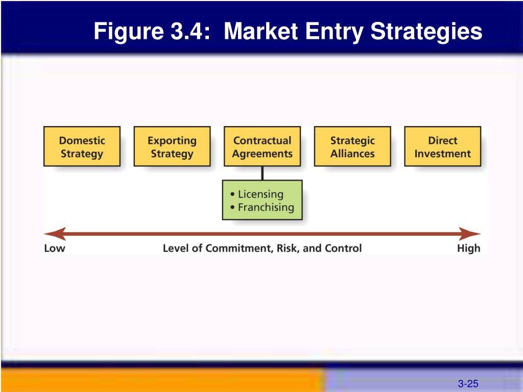 Figure 3.4:  Market Entry Strategies