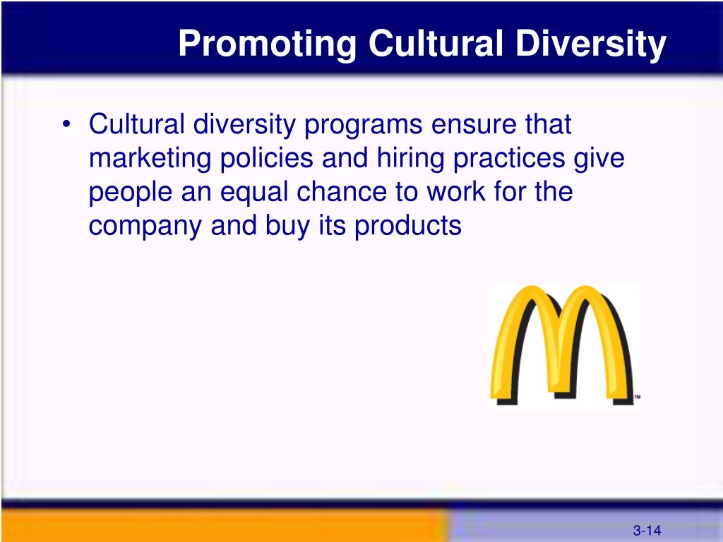 Promoting Cultural Diversity