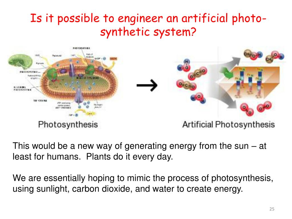Is it possible to engineer an artificial photo-synthetic system?