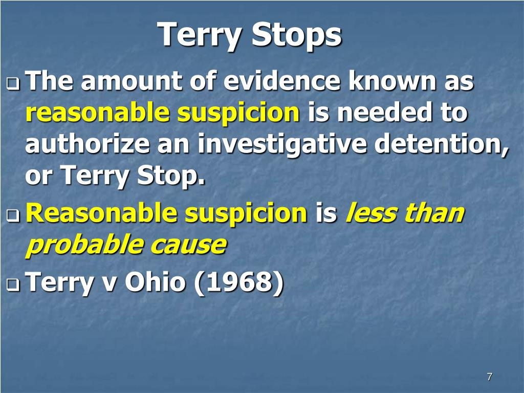 Terry Stops