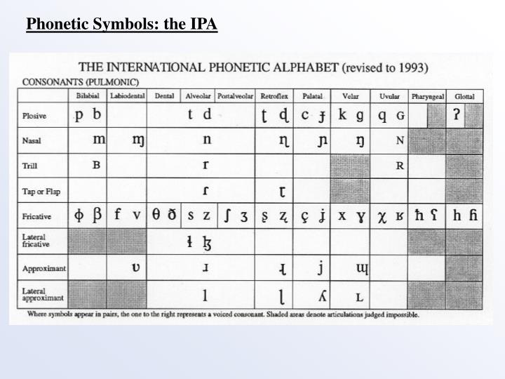 Phonetic Symbols: the IPA