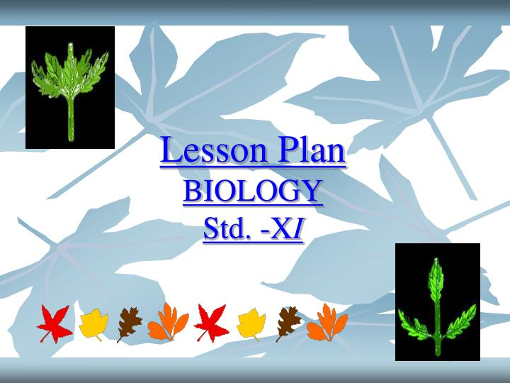 Lesson plan biology std x i