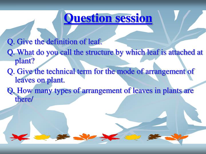 Question session