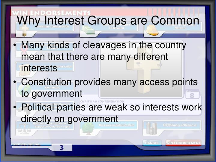 Why interest groups are common l.jpg