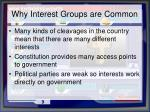 why interest groups are common
