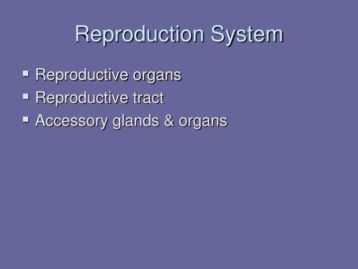 Reproduction System