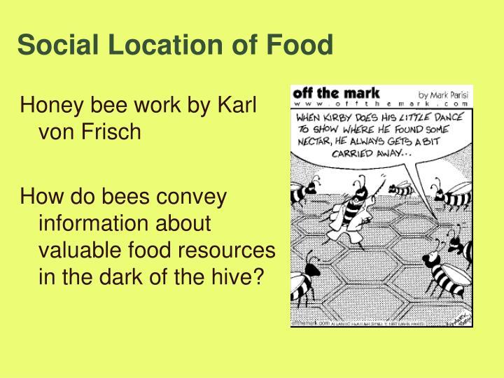 Social Location of Food