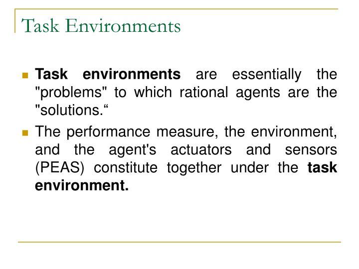 Task Environments