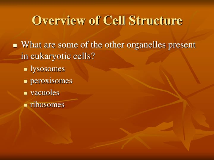 Overview of Cell Structure