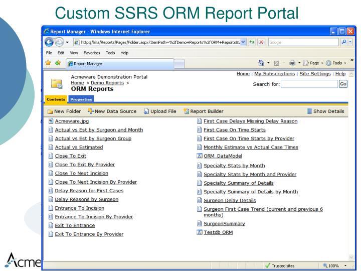Custom SSRS ORM Report Portal