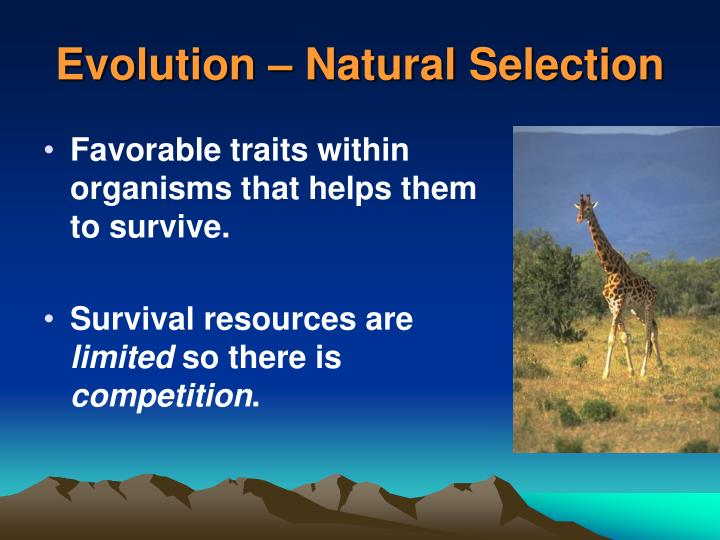 Evolution – Natural Selection