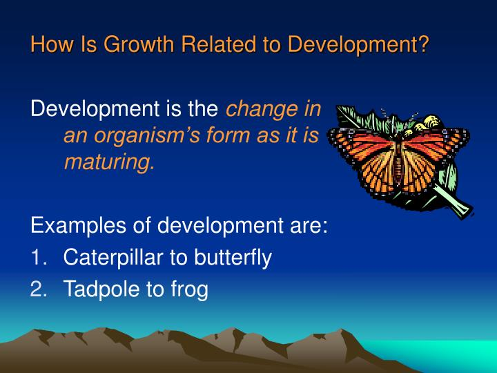 How Is Growth Related to Development?