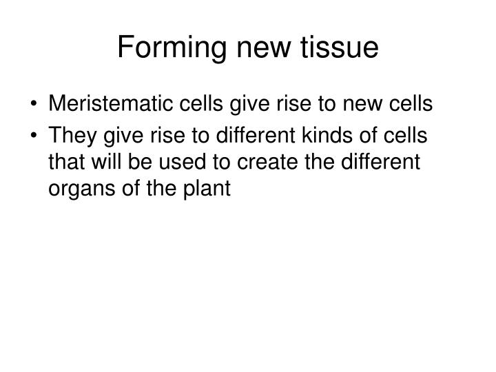 Forming new tissue