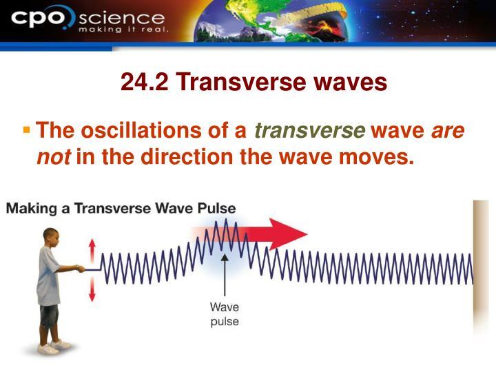 24.2 Transverse waves