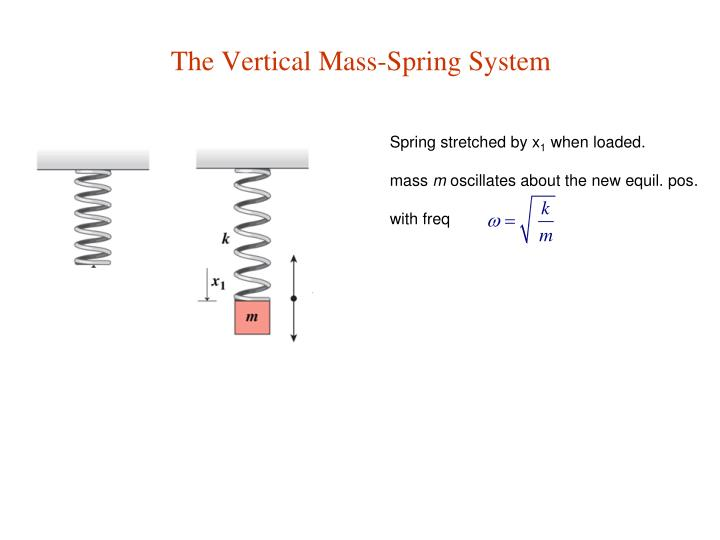 The Vertical Mass-Spring System