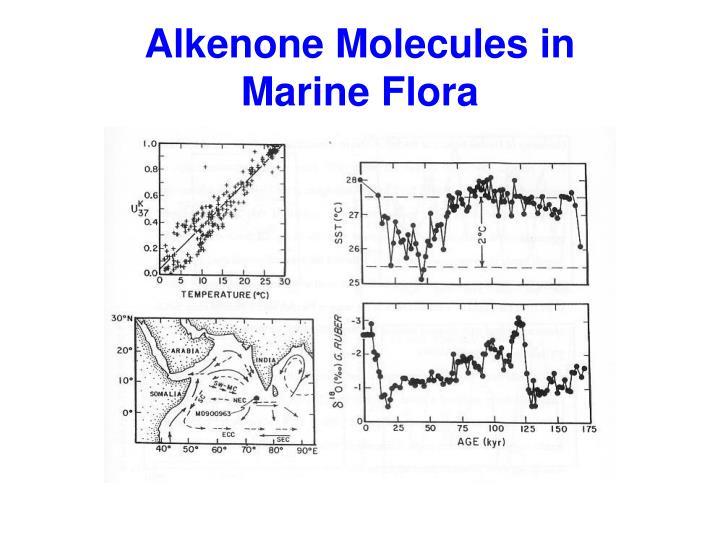 Alkenone Molecules in