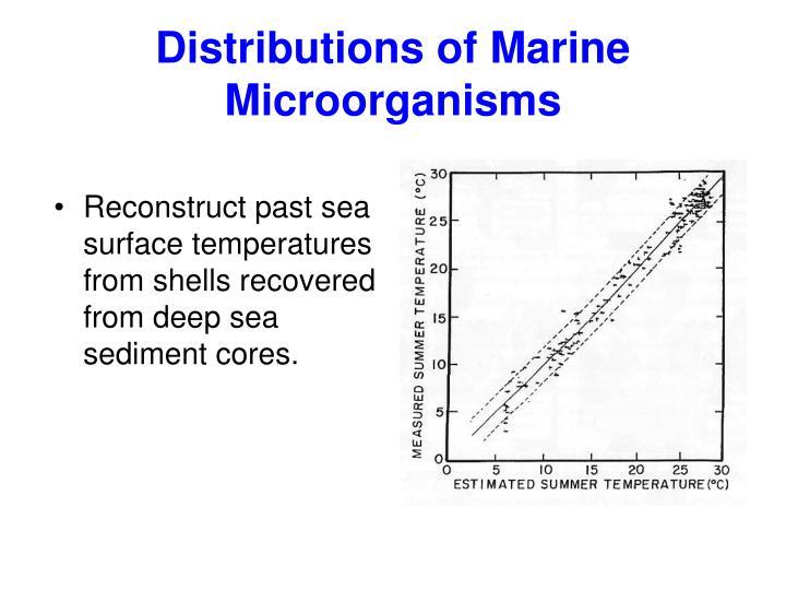 Distributions of Marine Microorganisms