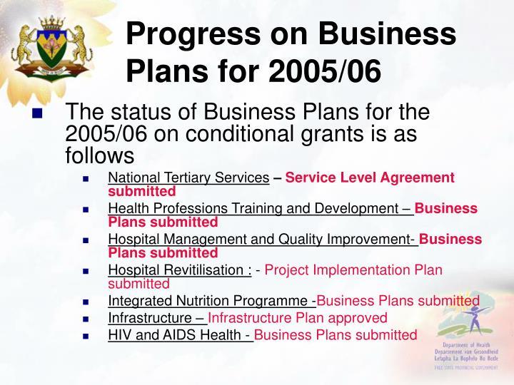 Progress on Business Plans for 2005/06