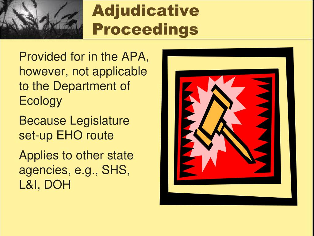 Adjudicative Proceedings
